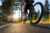 Mulher é gravemente ferida em Tullamore após ser atropelada por ciclista